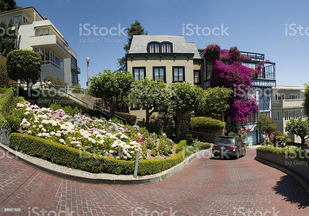 Lombard Street San Francisco royaltyfri bildbanksbilder