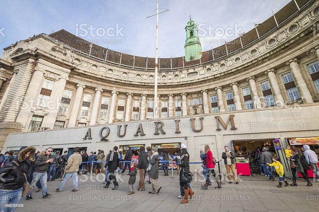 London Aquarium stock photo