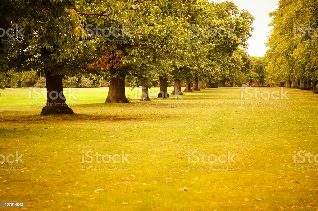 London st james park in autumn royalty-free stock photo