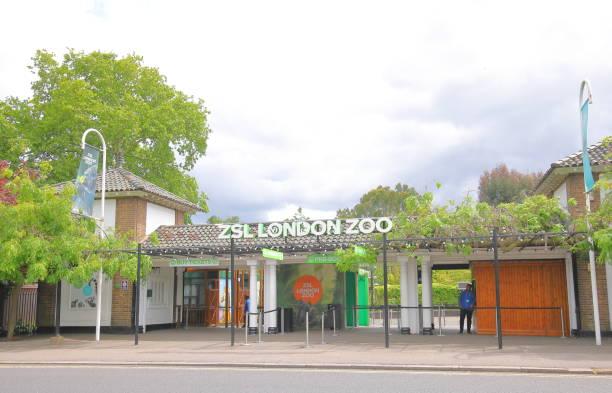 ZSL London Zoo London UK stock photo