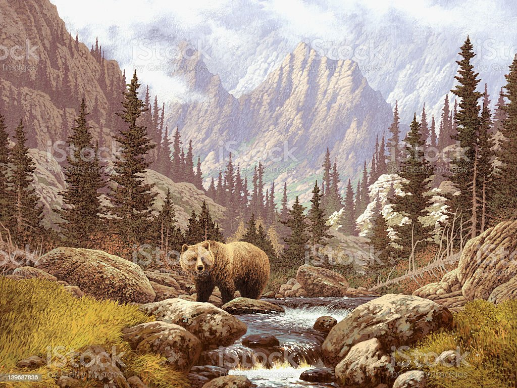 Lone brown bear on a stream under the Rocky Mountains stock photo