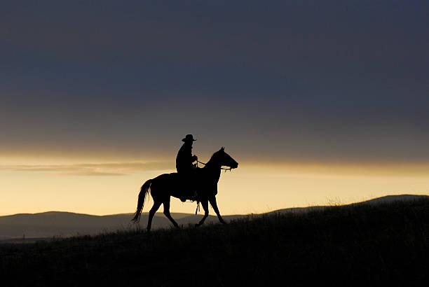 Lone Cowboy stock photo
