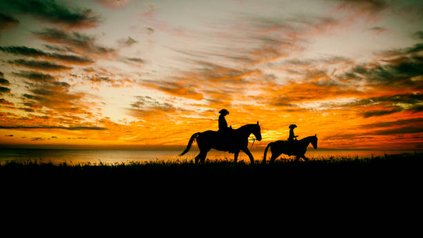 Lone Cowboy Mother and daughter on horseback in a field with as sunset. appaloosa stock pictures, royalty-free photos & images