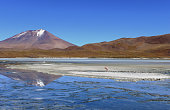 Solitary flamingo on a salt island with a beautiful volcano reflection into a lake, taken near the Salar de Uyuni (Salt Flats) - Bolivia