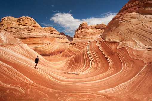 Adult male tourist hikes across the striated sandstone rock formations known as the Wave located within the Paria Canyon-Vermilion Cliffs Wilderness, Page, Arizona, US, North America