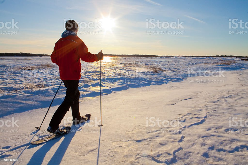 Lone man snow shoeing in the snow. stock photo