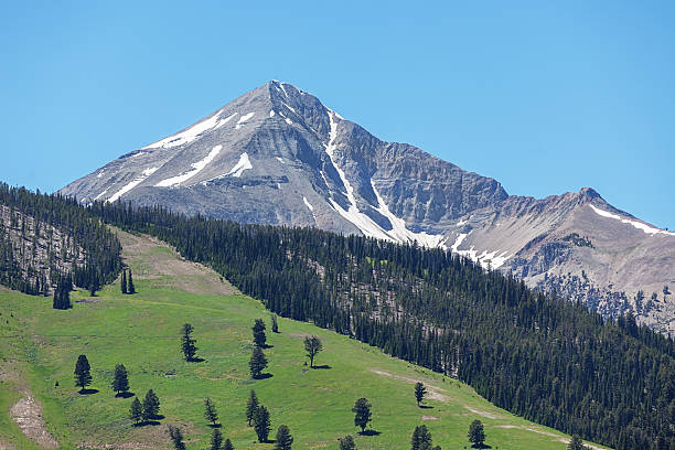 lone peak big sky montana usa - one animal stock photos and pictures