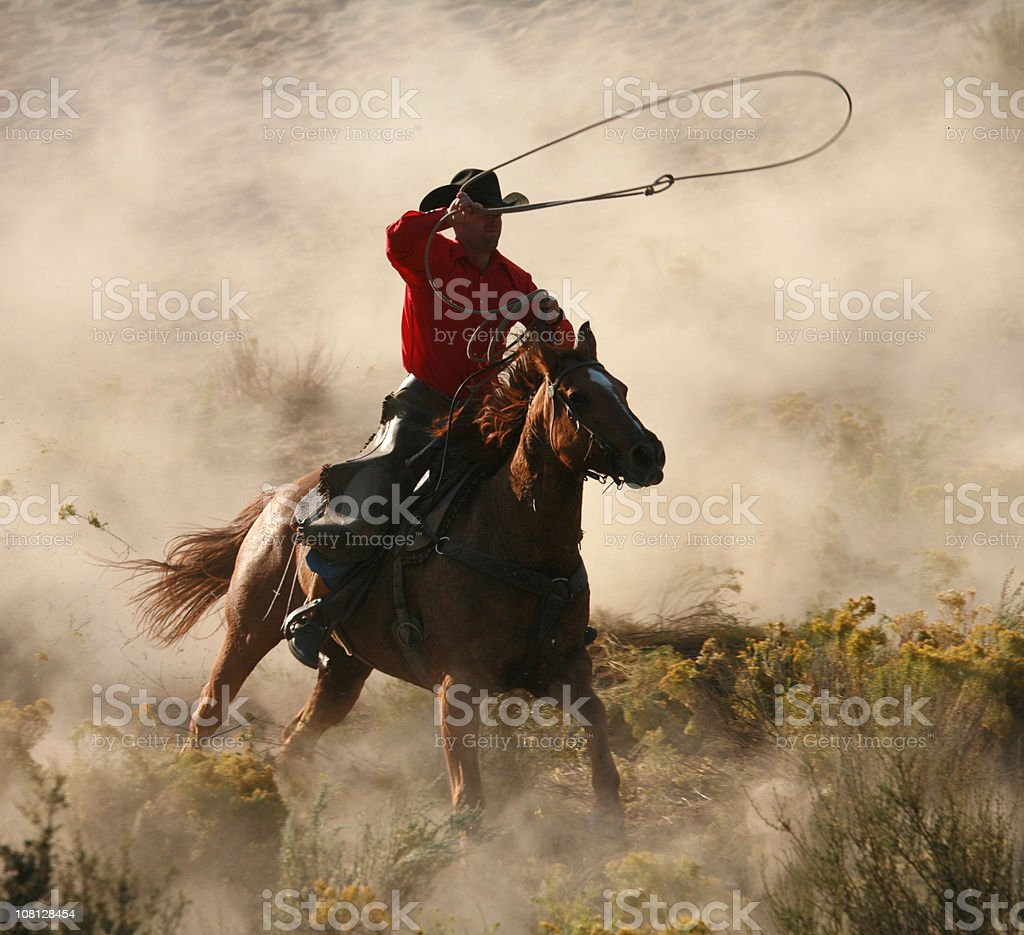Lone rider at the gallop throwing lassoo stock photo