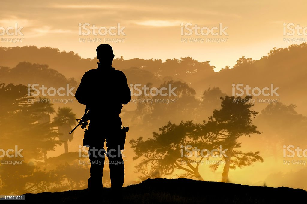 Lone Soldier Overlooking Tropical Forest stock photo