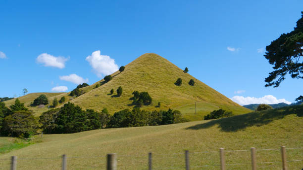 Lone steep grassy hill towers towards the sunny sky near scenic countryside road Lone steep grassy hill towers towards the sunny sky near scenic countryside road near Raglan. Beautiful shot of a tree covered hill in the picturesque New Zealand outback. Idyllic rural landscape. steep stock pictures, royalty-free photos & images