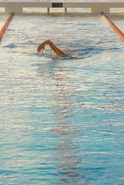 lone schwimmer - mark tantrum stock-fotos und bilder
