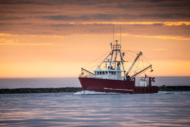 A lone trawler returns home through the inlet Fishing boat returns to port after a long night - at Barnegat Inlet fishing boat stock pictures, royalty-free photos & images