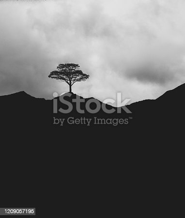 Lone tree high on a mountain ridge.  Composite image.