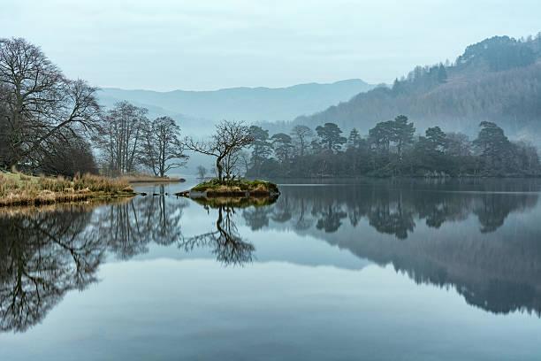 Solitaire Arbre reflète dans le calme lac sur la brume le matin. - Photo