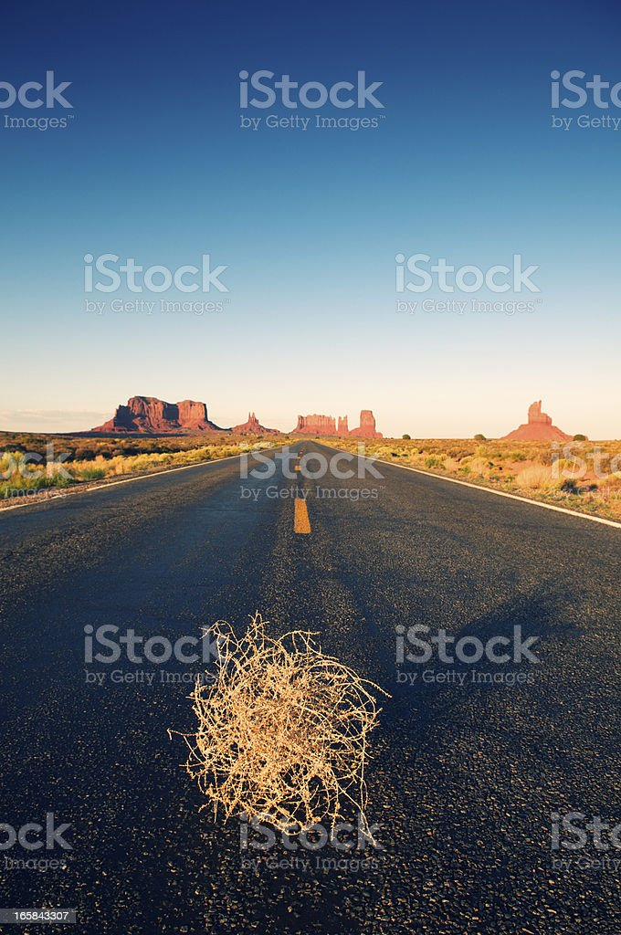 Lone Tumbleweed Sits on Desert Road royalty-free stock photo