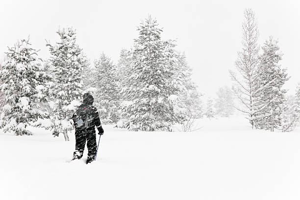 Lone walker in a blizzard stock photo