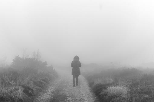 Lone walker in the mist