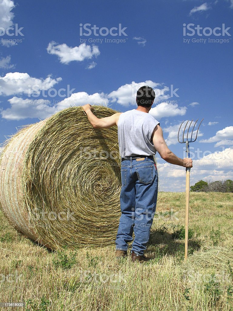 Lone-Granger Man with Pitchfork Looks Past Large Round Hay Bale royalty-free stock photo