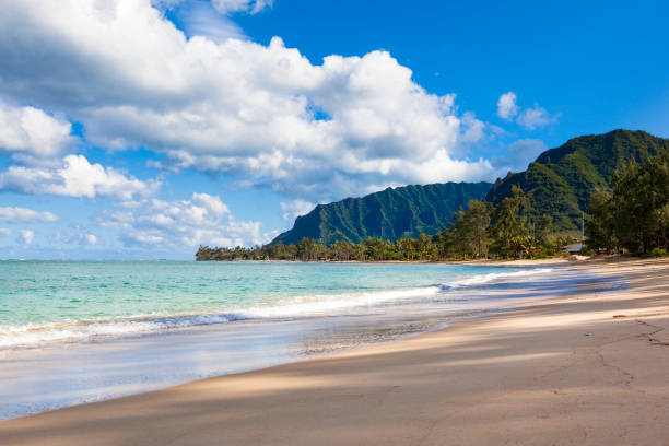 lonely beach at oahu island, hawaii islands stock photo