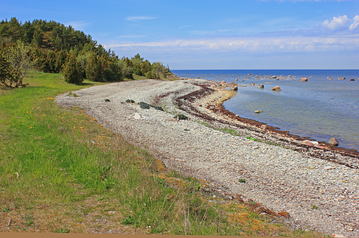 Lonely Beach by the Baltic Sea