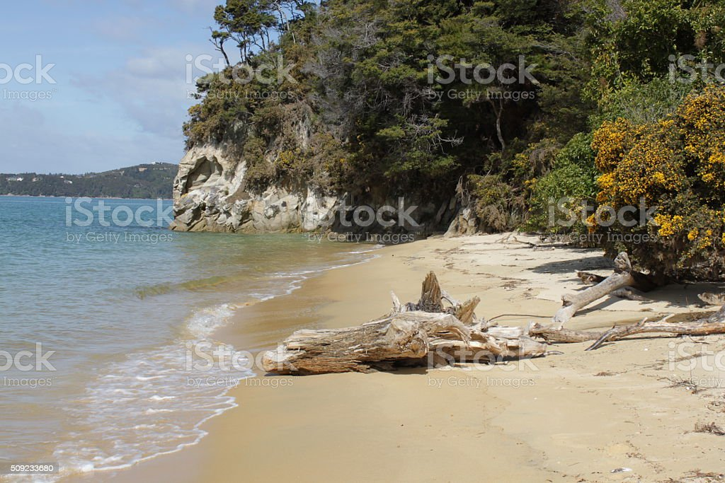 Lonely beach in Abel Tasman National Park in New Zealand stock photo
