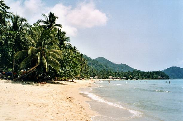 Lonely Beach, Koh Chang - Thailand Tropical Lonely Beach, surrounded by palm trees in Koh Chang's west coast, Thailand koh chang stock pictures, royalty-free photos & images