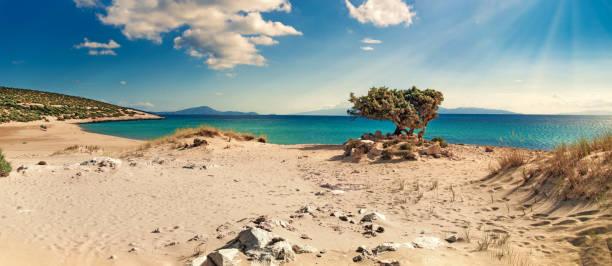 einsamer strand auf der griechischen insel naxos - ägäische inseln stock-fotos und bilder