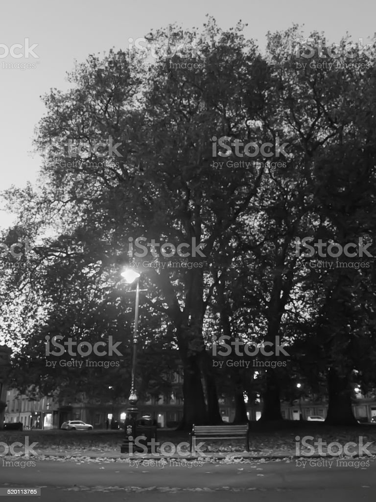 Lonely Bench and Streetlight in Black and White stock photo