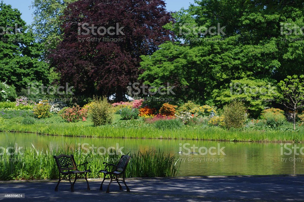 Lonely benches royalty-free stock photo