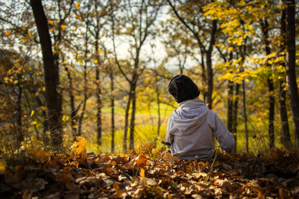 lonely boy sitting among the leaves in the autumn forest from behind stock photo