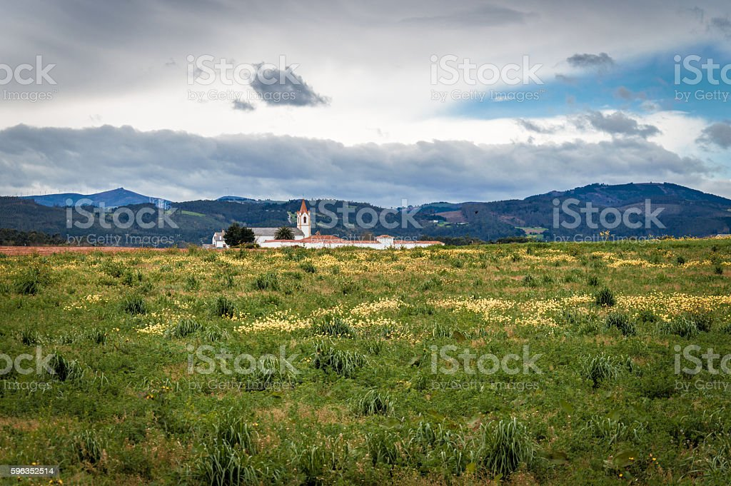 Lonely church within a field of flowers royalty-free stock photo