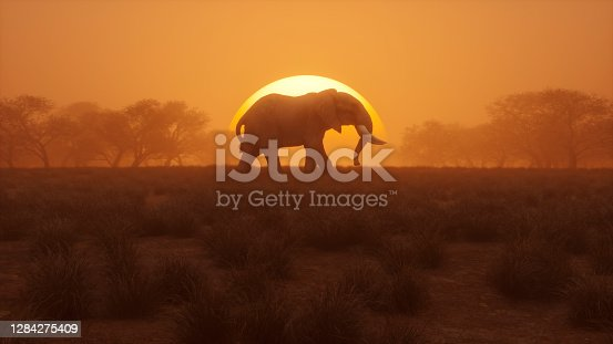 Lonely elephant walking at sunset. 3D generated image.