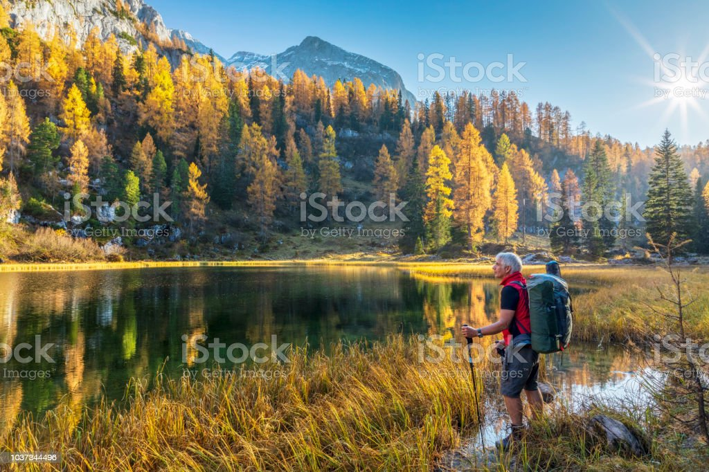 Lonely Hiker at Alpin Lake Schwarzensee in fall, Nationalpark Berchtesgaden - Alps - Foto stock royalty-free di Alpi