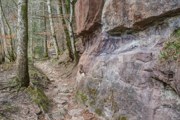 Lonely hiking trail through the Wutach Gorge. stock photo