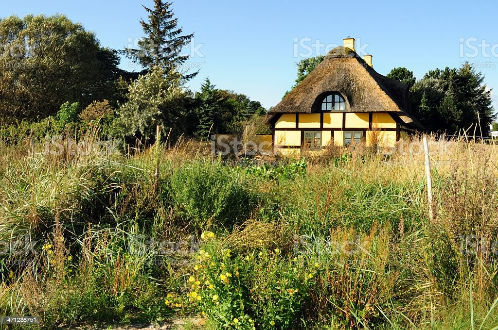 Lonely house in wilderness royalty-free stock photo