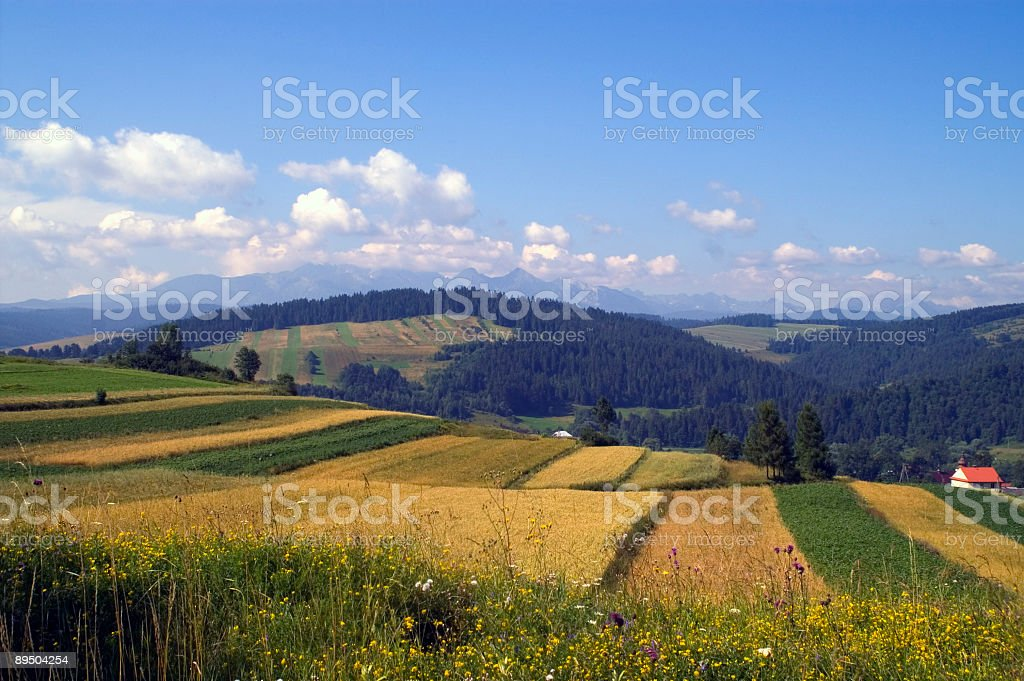 Lonely house royalty-free stock photo