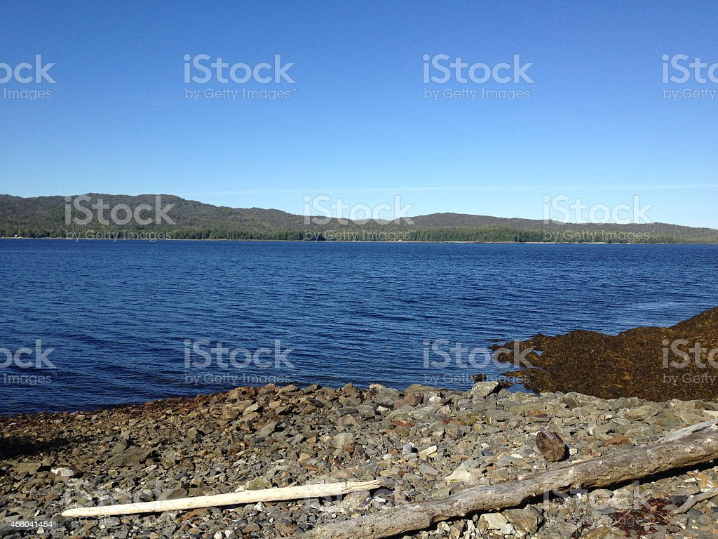 Lonely lake shore stock photo