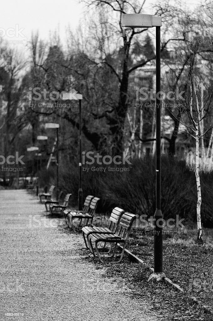 Lonely lane - park in winter royalty-free stock photo