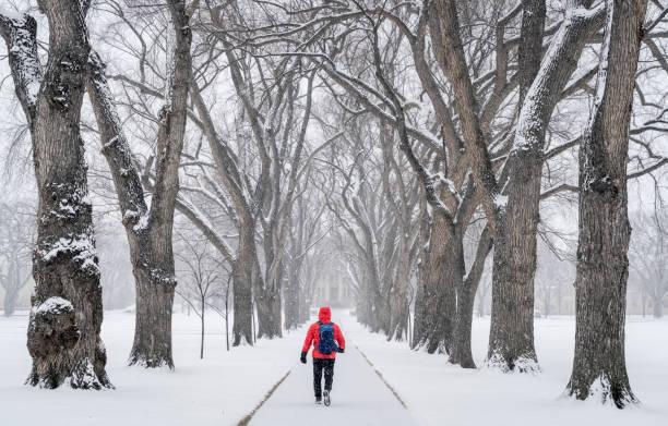 lonely male figure in a blizzard - la union stock-fotos und bilder
