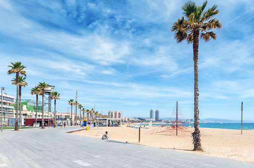 Lonely man is sitting near palm at sandy beach of Barcelona town.
