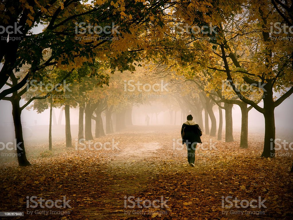 Lonely Man Walking in a Park on Foggy Autumn Morning royalty-free stock photo