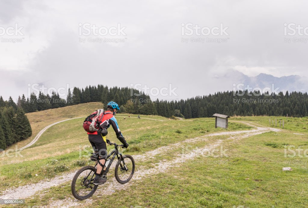 Lonely mountainbiker is crossing a pasture area in the Friulian Mountains, Italy. stock photo