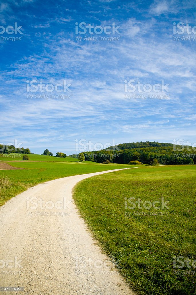 Lonely Path through Green Landscape royalty-free stock photo