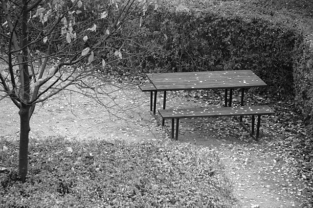 lonely picnic table - alintal stock pictures, royalty-free photos & images