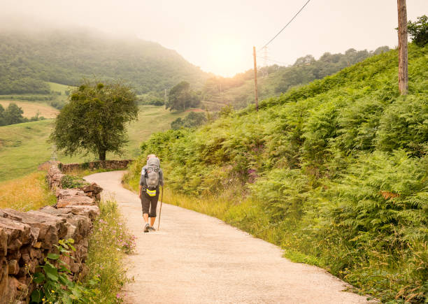 Lonely Pilgrim with backpack walking the Camino de Santiago in Spain, Way of St James Lonely Pilgrim with backpack walking the Camino de Santiago in Spain, Way of St James galicia stock pictures, royalty-free photos & images