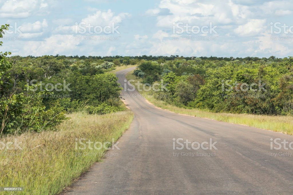 Lonely road inside Kruger Nationalpark, South Africa royalty-free 스톡 사진