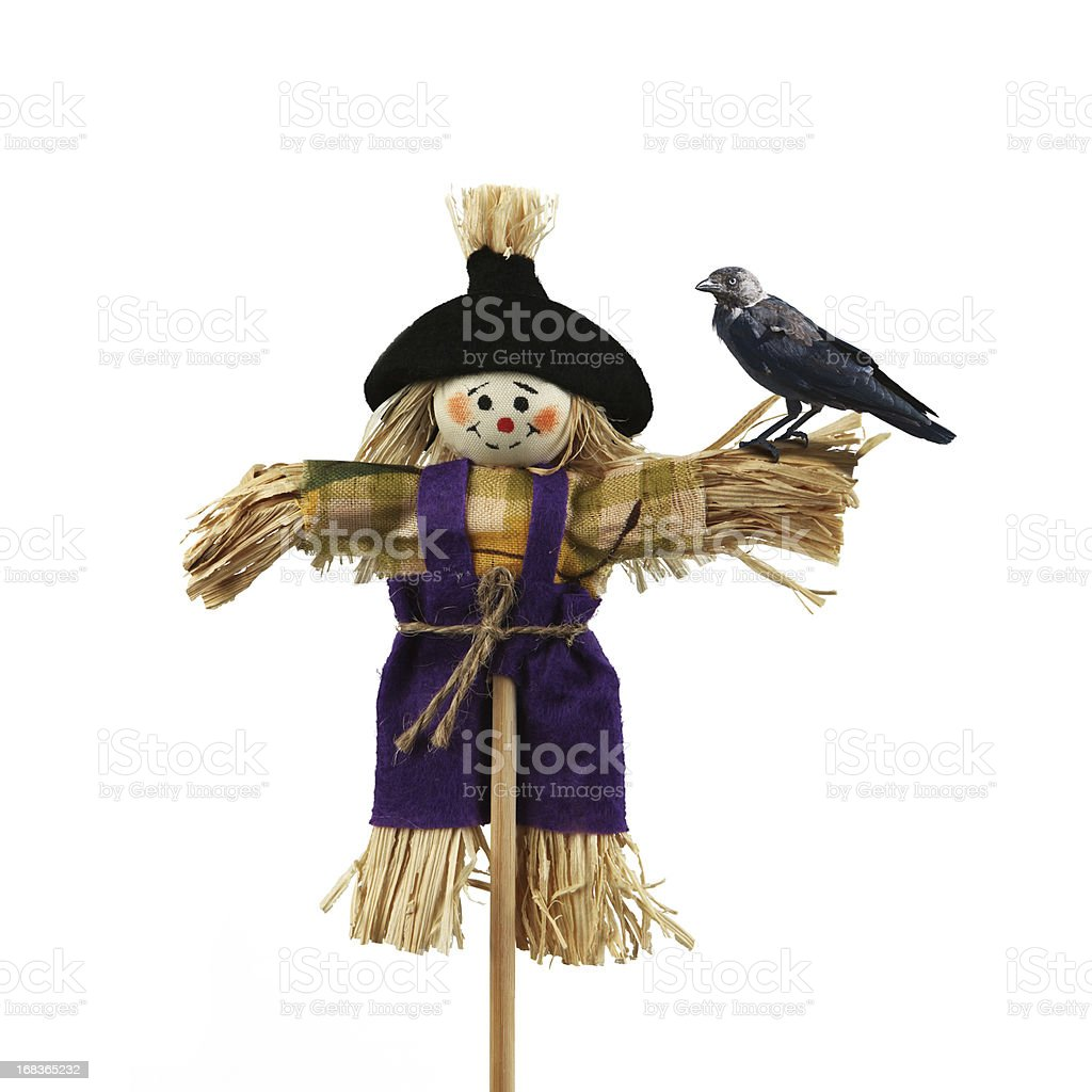 Lonely scarecrow stock photo