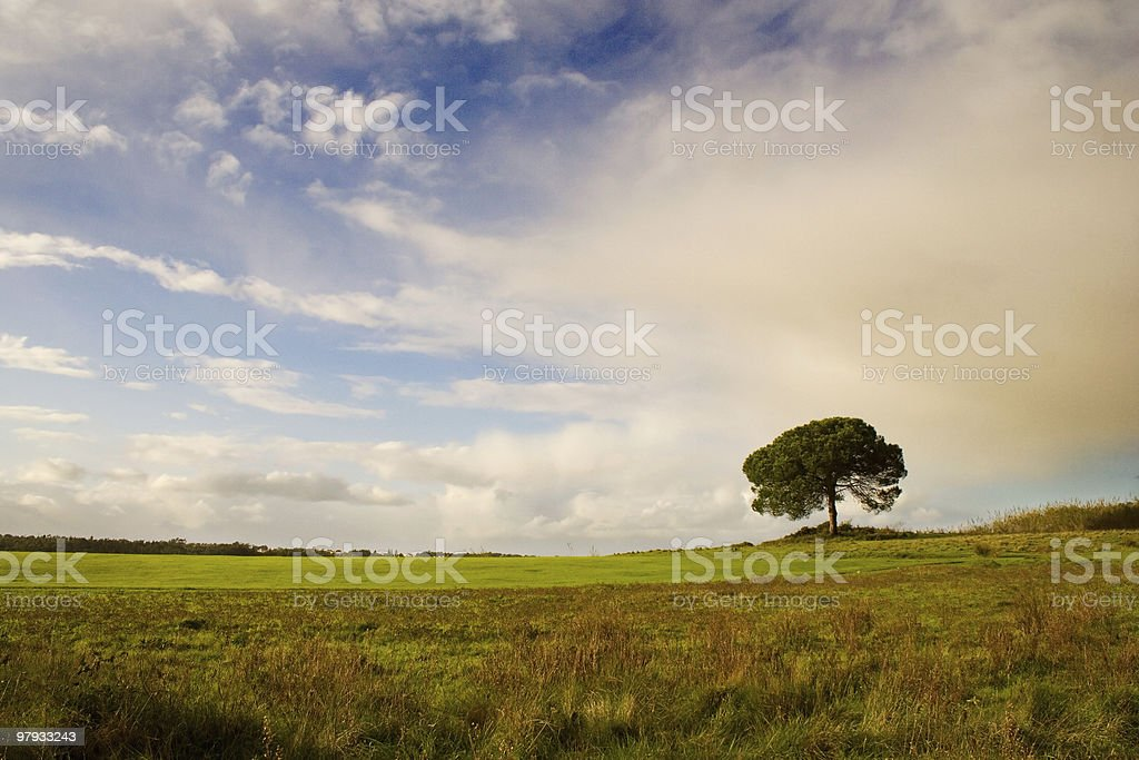 Lonely shadow royalty-free stock photo