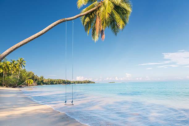 lonely swing, khao lak, thailand - beach in thailand - fotografias e filmes do acervo
