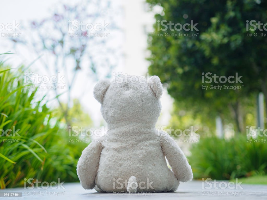 Lonely Teddy Bear Sitting On The Walk Way Or Road Concept About Love Royalty